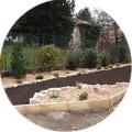 plantation de végétaux Alès